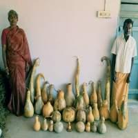 Profile image of Parameshwaran. A